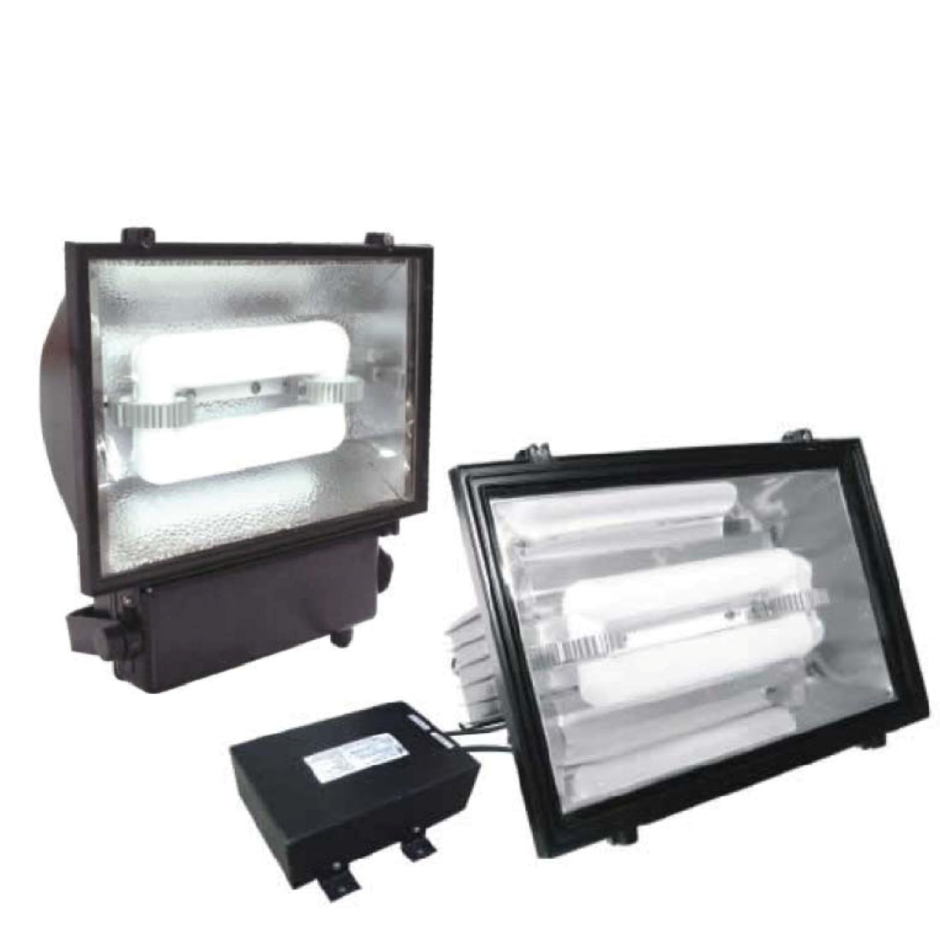 ZY Series Induction Flood Light